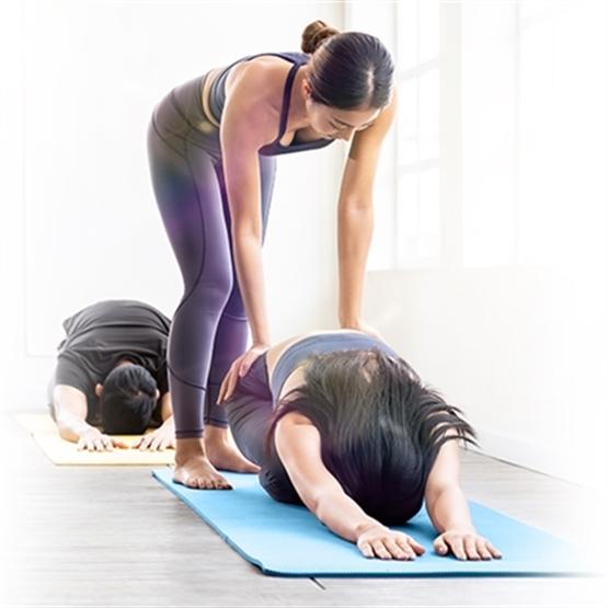 Curso de Professores de Yoga Turma 26